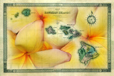 A 1876 Centennial Map of the Hawaiian Islands with Artwork of a Yellow Plumeria Flower Photographic Print by Patrick McFeeley