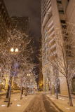 Night Scene on East Pearson Street with Christmas Lights Photographic Print by Richard Nowitz