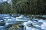 The Clinton River Flows Along Milford Track in Fiordland National Park Photographic Print by Michael Melford