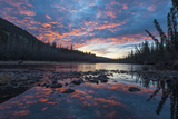 A Grizzly Bear, Ursus Arctos, Hunting Salmon in a River at Sunset Photographic Print by Peter Mather