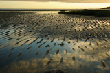 Sunrise at the Intertidal Zone at Low Tide at Payne's Creek Beach Photographic Print by Darlyne A. Murawski