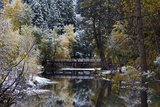 Snow-Covered Trees and Bridge on the Merced River in Yosemite Valley Photographic Print by Marc Moritsch