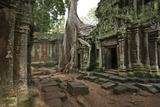 Tree Roots Encase a Ruin in Ta Prohm, a Temple Near Angkor Wat Fotografisk tryk af Scott S. Warren