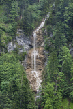 A Tall Waterfall in an Evergreen Forest in the Kessi Schlucht Canyon Photographic Print by Ulla Lohmann
