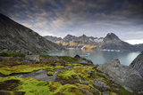 Moss-Covered Stones on a Mountainous Fjord Coast at Sunset Reproduction photographique par Keith Ladzinski
