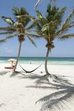 A Hammock Awaits Between Palm Trees on a White Sand Beach Photographic Print by Macduff Everton