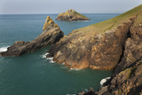 Coastal Cliffs at Rumps Point, Along the Atlantic Coast of Cornwall, Near Padstow Photographic Print by Nigel Hicks