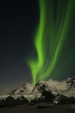 The Northern Lights over Skagsanden Beach, on a Snowy Mountainous Coast Photographic Print by Orsolya Haarberg