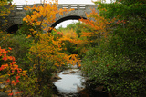 Carriage Road Bridge at Duck Brook in Acadia National Park Photographic Print by Darlyne A. Murawski