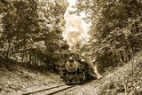 The Essex Steam Train Chugs Through the Forest on a Summer Day Photographic Print by Brian Drouin