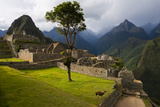 A Llama in the Main Square at the Inca City of Machu Picchu Lámina fotográfica por Diane Cook Len Jenshel