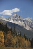 Eagle Peak and Uto Peak Rise Above a Woodland in Fall Color Photographic Print by Matthias Breiter