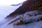 Fog Reaches the High Altitudes of the Dohezar Forest of Iran Photographic Print by Babak Tafreshi