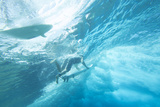 Underwater View of Surfers with Surfboards Photographic Print by Andy Bardon