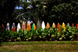 A Colorful Fence Made of Old Surfboards Fotografisk trykk av Patrick McFeeley