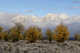Clouds Clear from the Tetons after a Fall Storm Photographic Print by Barrett Hedges