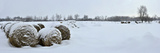 Snow Covered Bales of Hay in a Field on Howe Island Fotografisk tryk af Raul Touzon