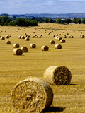 Bales of Hay in County Carlow, Ireland Photographic Print by Chris Hill
