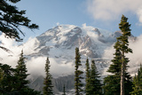 The Summit of Mount Rainier, Visible Through Low-Lying Clouds and Evergreen Trees Photographic Print by Eric Kruszewski