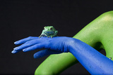A Waxy Monkey Frog, Phyllomedusa Sauvagii, Sits on a Blue Hand Photographic Print by Robin Moore