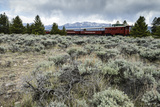 Leadville Colorado and Southern Railroad Train Fotografisk tryk af Keith Ladzinski