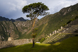 Agricultural Terraces at the Ancient Inca City of Machu Picchu Lámina fotográfica por Diane Cook Len Jenshel