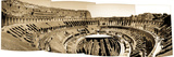 A Panoramic View of the Colosseum Photographic Print by Skip Brown