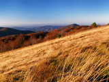 Tall Golden Grasses in Late Afternoon Sun on Top of Max Patch Photographic Print by Amy and Al White and Petteway
