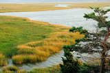 Scenic View of a Salt Marsh in the Cape Cod National Seashore Photographic Print by Darlyne A. Murawski