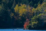 Fall Colors around Echo Lake on Mount Desert Island Photographic Print by Brian Gordon Green