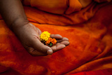 A Man Makes an Offering of Marigolds During the Kumbh Mela Festival in 2013 Reproduction photographique par Greg Davis
