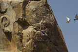 The Eroded Face of the Colossus of Memnon Photographic Print by Michael Melford
