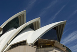 A Detail of the Roof of the Sydney Opera House Photographic Print by Sergio Pitamitz