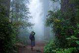 A Woman Peers at a Redwood Tree Through Coastal Fog Photographic Print by Michael Nichols