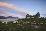 The Ancient Church of Rubha Na Teampaill Photographic Print by Jim Richardson