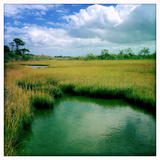 A Chesapeake Bay Marsh Photographic Print by Skip Brown