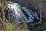The Gibbon River Pours over Gibbon Falls Photographic Print by Gordon Wiltsie