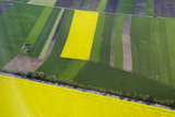 Aerial View of Rapeseed Fields Near Munich, Germany Photographic Print by Scott S. Warren