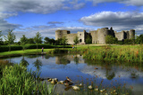 Roscommon Castle in Ireland Photographic Print by Chris Hill