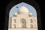 The Taj Mahal Photographic Print by Michael Melford