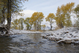 A Fall Snow Storm Blankets a Stream Bed in the Tetons Photographic Print by Barrett Hedges