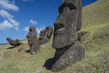 Moai of Hanga Roa Photographic Print by Michael Melford