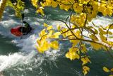 Kayaking on the Kanaskis River Photographic Print by Bill Hatcher