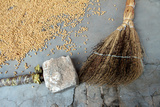 Grain Drying on the Ground Near a Broom Photographic Print by Sean Gallagher