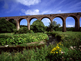 The Tassagh Viaduct in County Armagh Photographic Print by Chris Hill