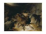 Deer and Deer Hounds in a Mountain Torrent ('The Hunted Stag') Giclee Print by Edwin Henry Landseer