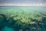 The Great Barrier Reef Photographic Print by Michael Melford