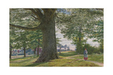 A Girl by a Beech Tree in a Landscape Giclee Print by George Price Boyce