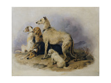 Highland Dogs Giclee Print by Edwin Henry Landseer