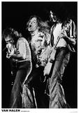 Van Halen – Rotterdam 1979 Plakater